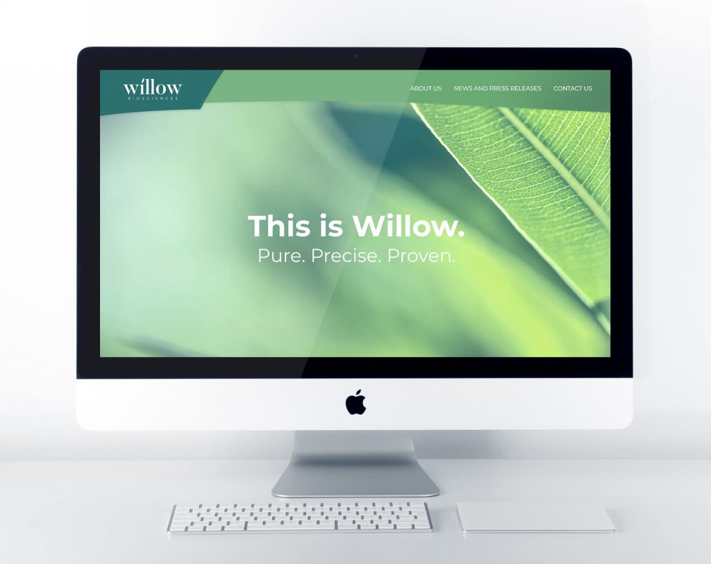 Willow Bio Website